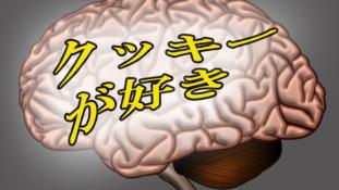Japán nyelvvel a gondolatolvasás útján