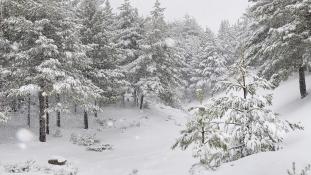 Szibériába is most jött meg a hó