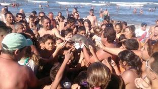 Bébidelfint öltek a tudatlan turisták Argentínában