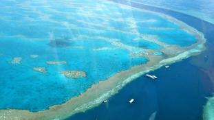 Egyre nagyobb veszélyben a Nagy-korallzátony