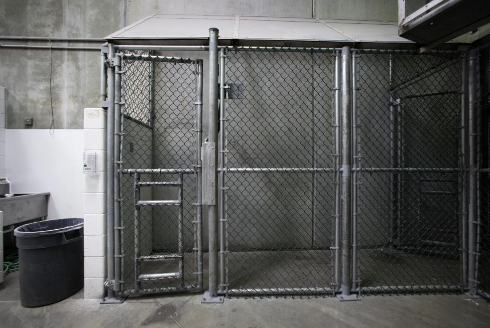 Ilyen cellába kerülnek először az őrizetesek. 2013. március 5.