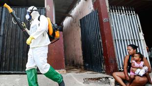 A hadsereg vette üldözőbe a szúnyogokat Kubában