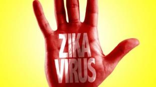 Zika: gyorsan terjed szexuális úton is