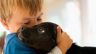 Ha szereti kutyáját, ne ölelgesse tovább!