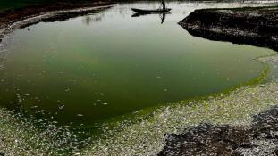 Egyre mérgezettebbek a vizek Kínában