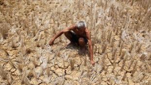 Dupla dinamit: egyszerre szárazság és árvíz Ázsiában