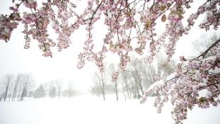 Téllel jött az április a keleti partra