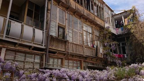 A Nap Képe – Lila akác Tbilisziben