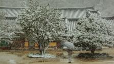 Koreai fotókiállítás a Hopp Ferenc Múzeumban