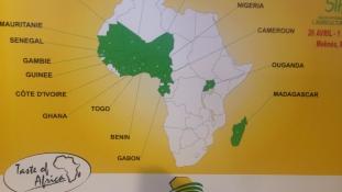 """""""Halban nagyok vagyunk"""" – esélyek Afrikában"""