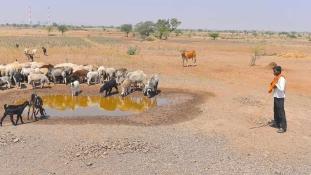 Már alig van víz India közepén