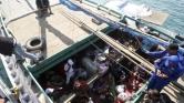 Ausztráliát is elérte a migránsáradat