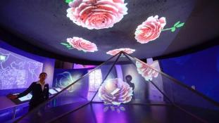 Rózsamúzeum 3D-ben – a rózsapálinka és a magyar kohászok Kína közepén