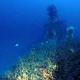 73 éve eltűnt brit tengeralattjárót találtak meg