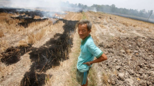 Veszélyben az emberek, a kávé és a rizs – Az El Niño most Vietnamban tombol