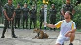 Lelőtték a riói olimpia jaguárját