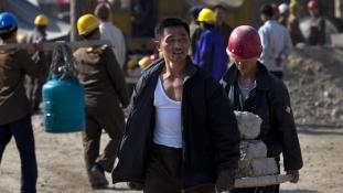 Ne adjanak munkát az észak-koreaiaknak