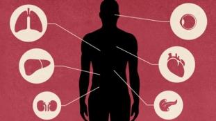 Szervkereskedelemmel gyanúsított orvosokat vettek őrizetbe Indiában