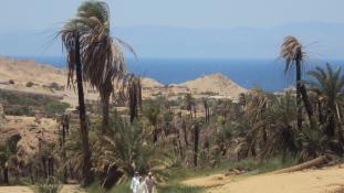 90 ezer éves emberi maradványra bukkantak Szaúd-Arábiában
