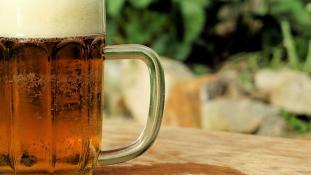 Kutatói álomállás sörivóknak évi 20 millióért