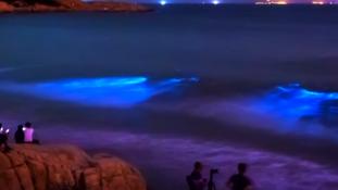 A tenger könnyei – videó