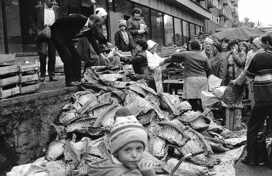 Bárányhúsvásár - Novokunyeck, 1988