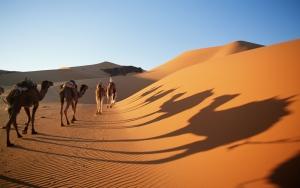 sahara_desert_algeria1