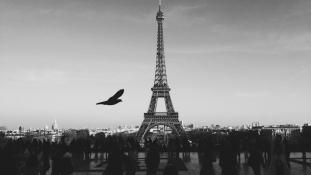 A francia diákok csaknem háromnegyede külföldön szeretne dolgozni
