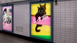 Reklám helyett macskás képek a metróban
