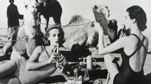 Piknik Marokkóban, 1958.