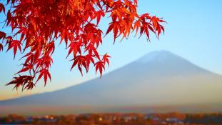 Egy este Japánban – Óbudán