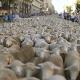 Birkainvázió Madridban