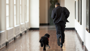 Obamáék megmutatták – a Fehér Ház magánlakrészei