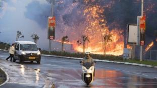 Mi gyújtottuk fel Haifát – állítja egy, az Al-Kaidához köthető csoport