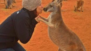 Ez a kenguru minden nap öleléssel ad hálát a gondozójának