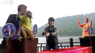 Az állatok Trumpra tettek – videókkal