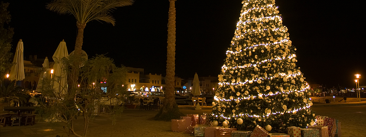 egypt-christmas-tree-wide