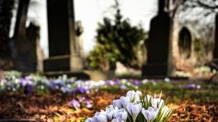 A svédek többsége környezetbarát temetésre vágyik