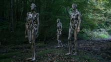 Uszadékfából készít hátborzongató szobrokat egy japán művész