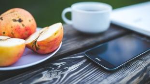 Csökkenti-e a mobil a nemzőképességet?