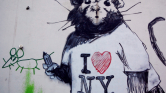 Gyilkoltak a patkányok New Yorkban