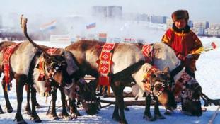 100 éve volt az első számi kongresszus – az utolsó nomád nép Európában