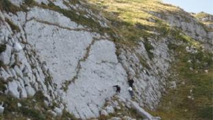 Hatalmas dinoszaurusz lábnyomot fedeztek fel Abruzzóban