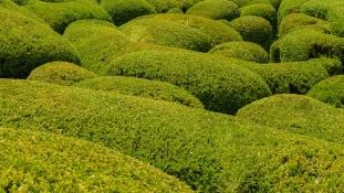 Hamarosan megnyílik Spanyolország legnagyobb labirintusa