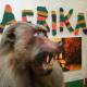 Egész Afrika egyetlen múzeumban – egy megnyitó képei