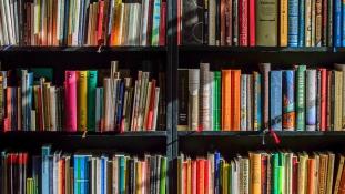 Több pénzt keres, akit gyerekként sok könyv vett körül – állítja egy tanulmány