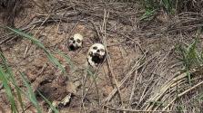 Újabb tömegsírokat fedeztek fel a Kongói Demokratikus Köztársaságban