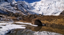 47 nap után élve találták meg a Himalájában eltűnt hegymászót – videó