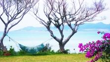 Japán egyik legszebb szigetét teleszemetelték a turisták