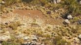 Rejtélyes segélykérés bukkant fel Nyugat-Ausztráliában